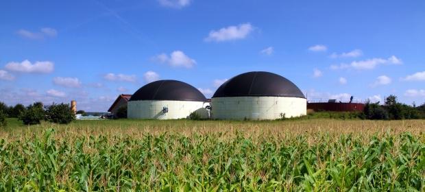 Biomass and Biogas